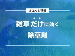 雑草だけに効く除草剤_エッジ情報